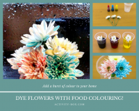 How to dye flowers with food colouring